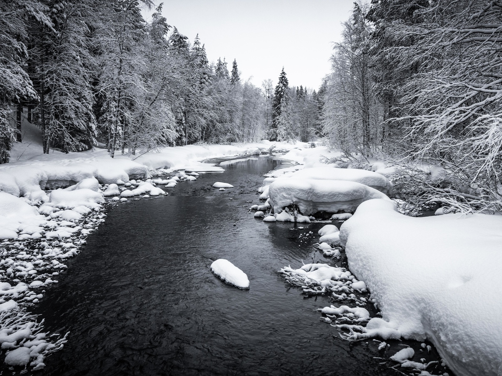 снег, река, лес, деревья
