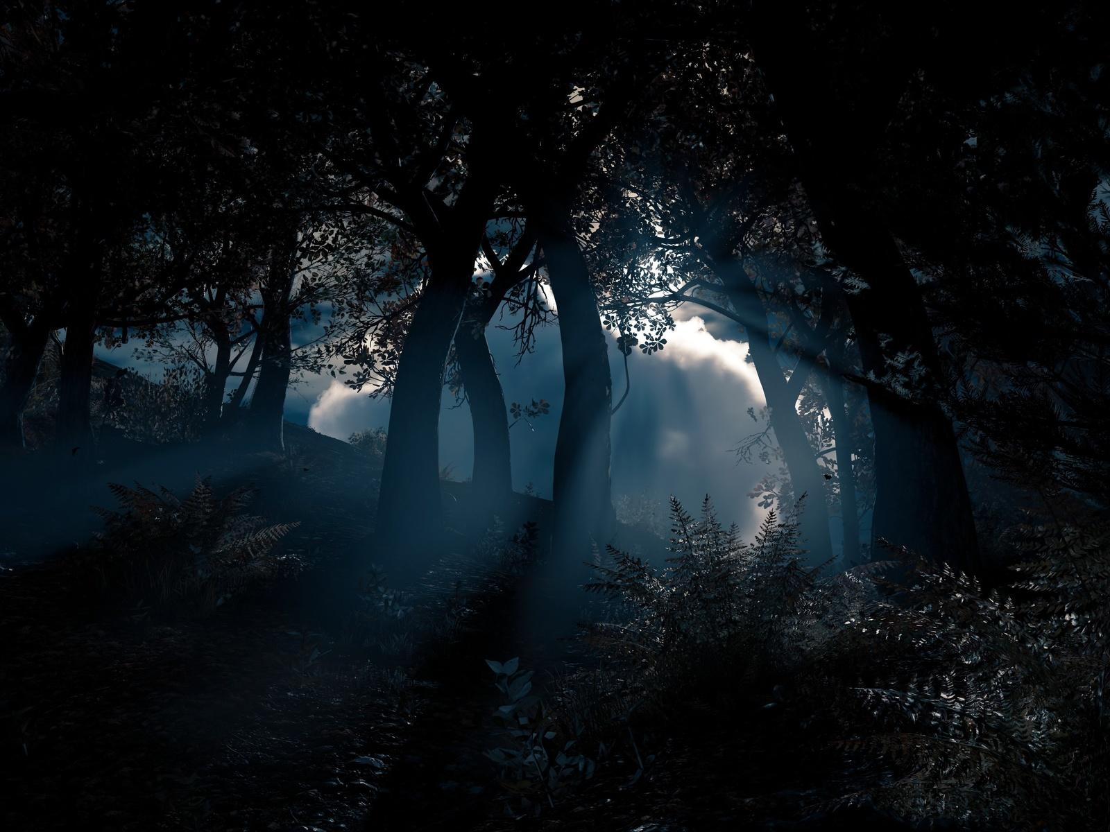 ночь, лес, кусты, рендер