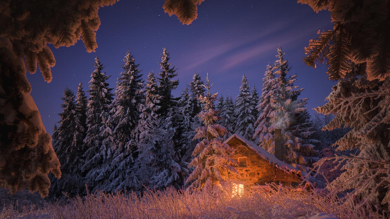 зима, лес, небо, трава, свет, снег, деревья, пейзаж, природа, дом, звёзды, вечер, ели, калин панчев