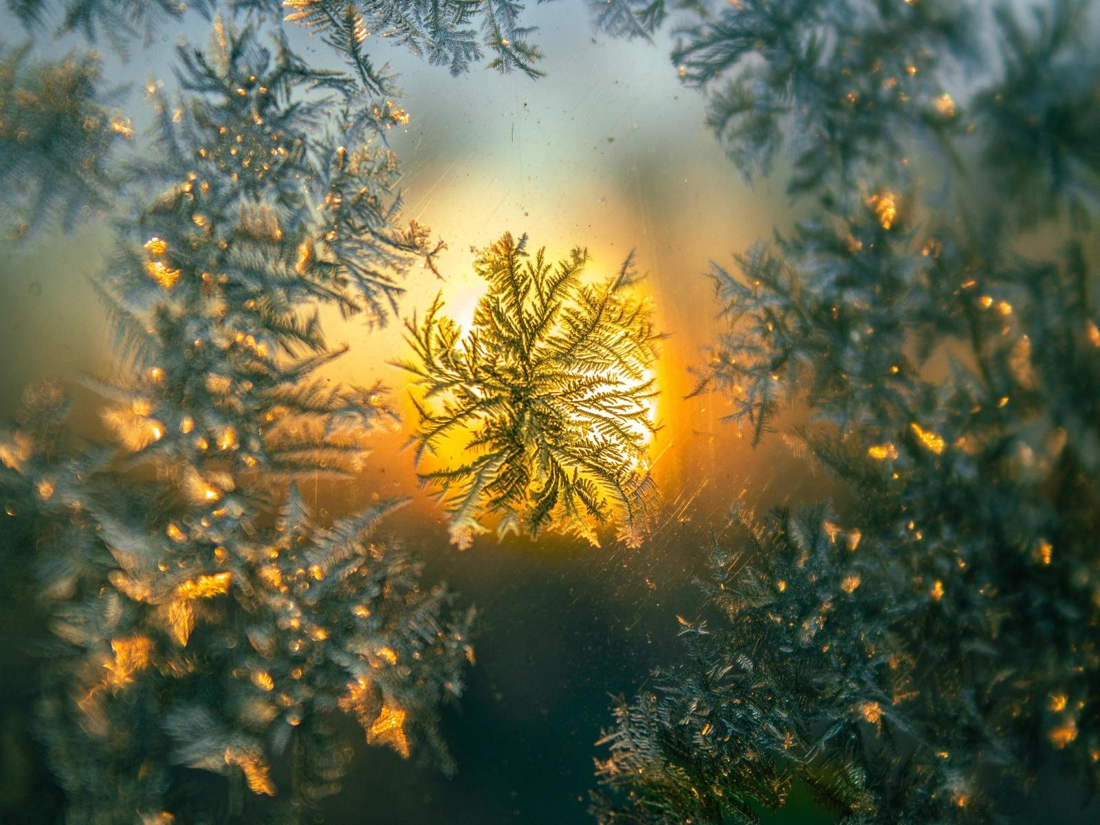 снежинка, макро, узор, стекло