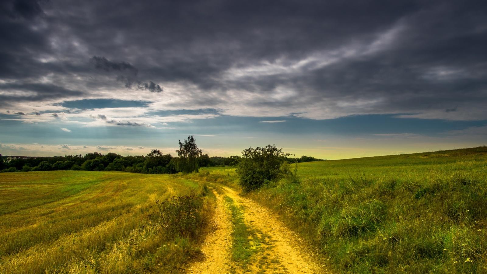 небо, дорога, трава, облака, деревья, растения, пейзаж, горизонт