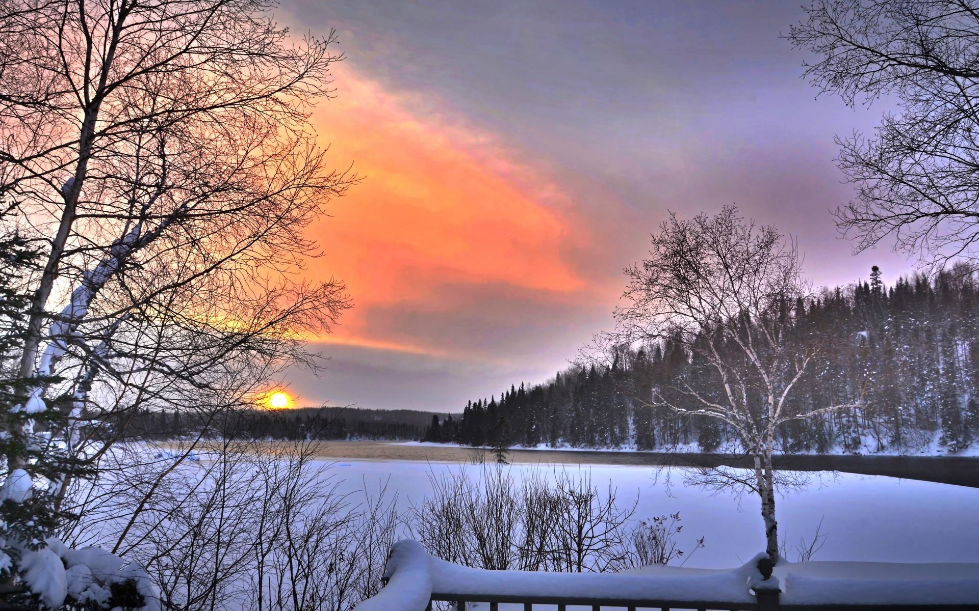 пейзаж природа, зима, снег, деревья, небо, закат