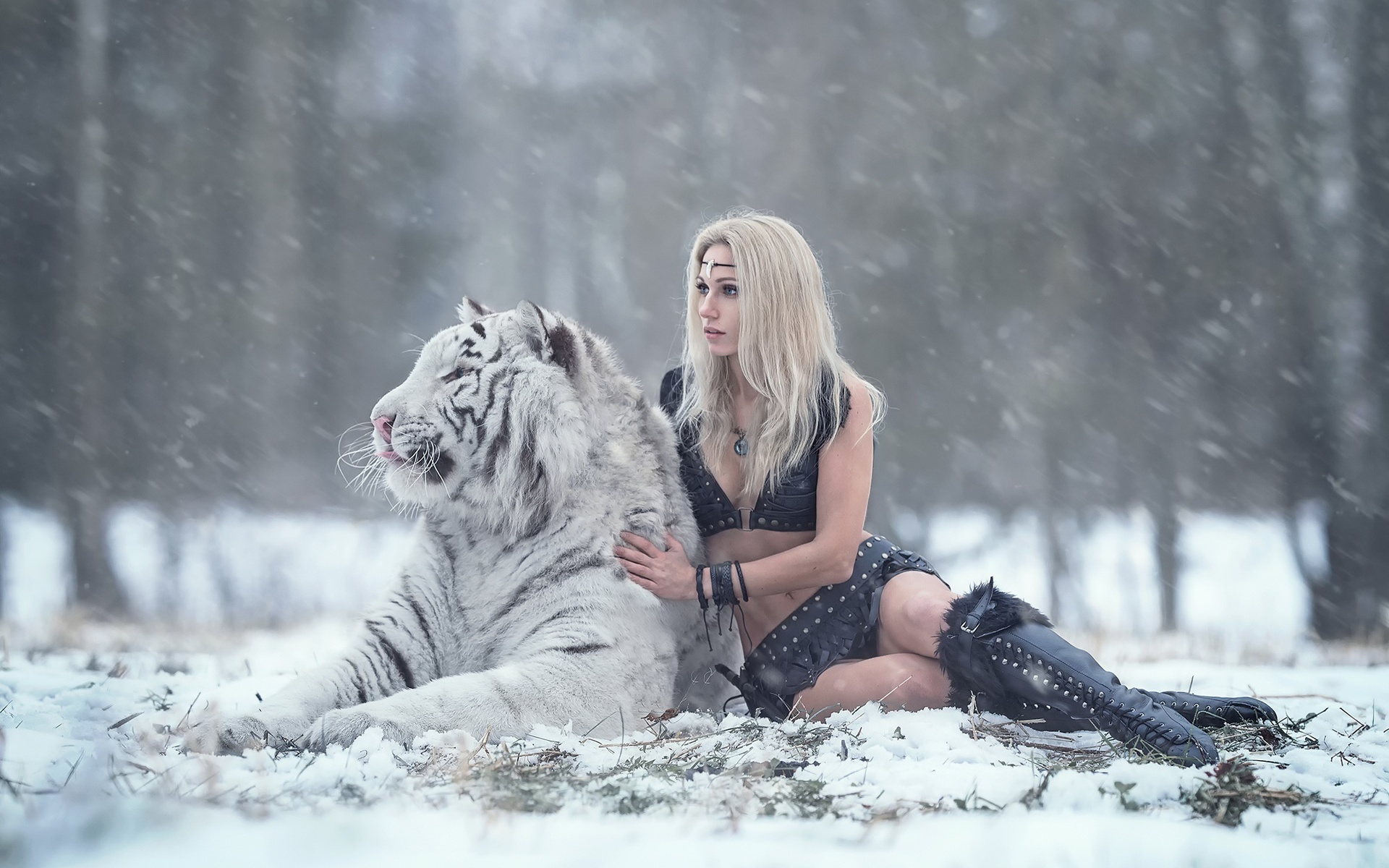 дарья лефлер, тигр