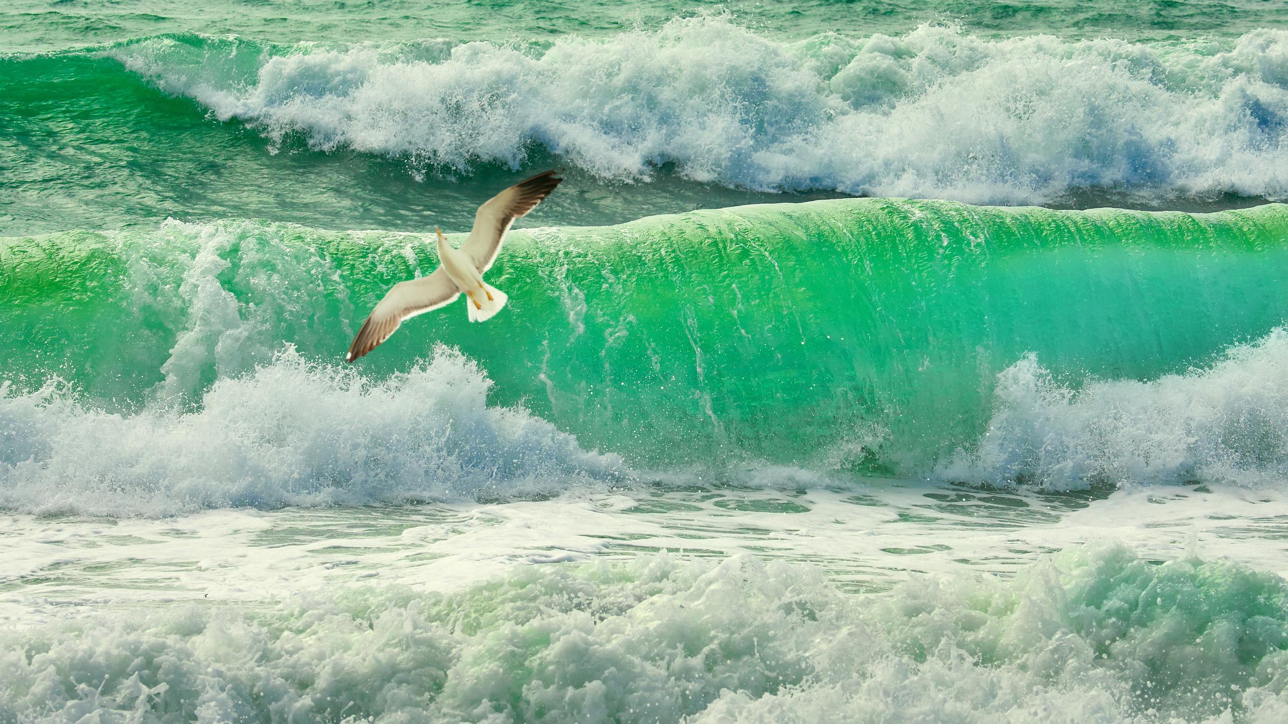 океан, шторм, прибой