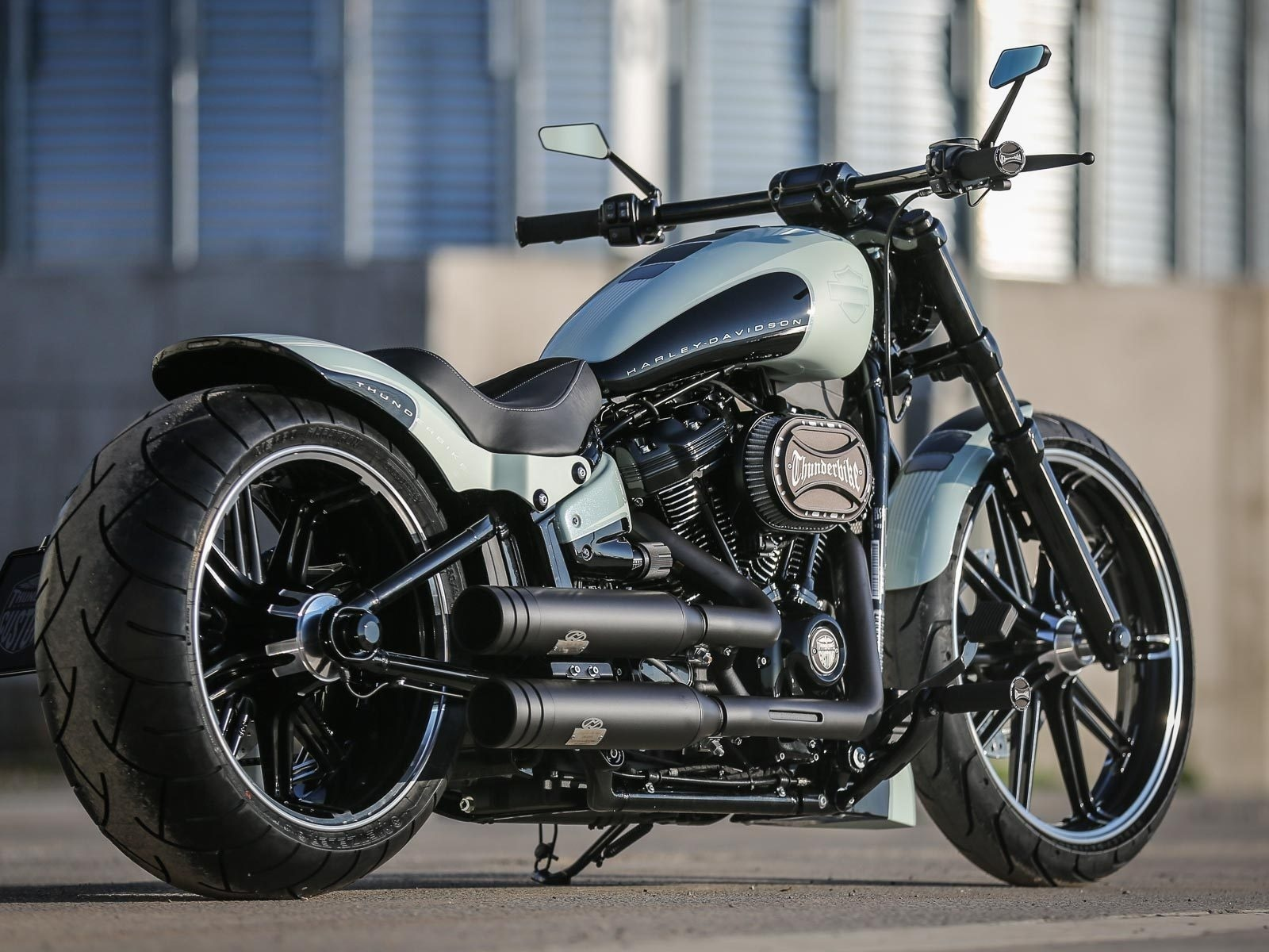 harley davidson, custom, thunderbike