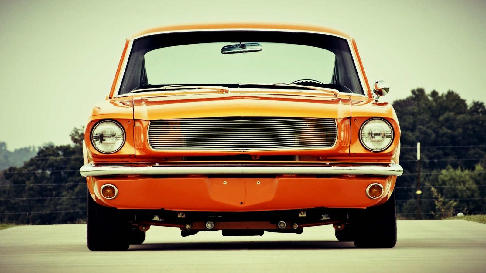 ford, mustang, custom