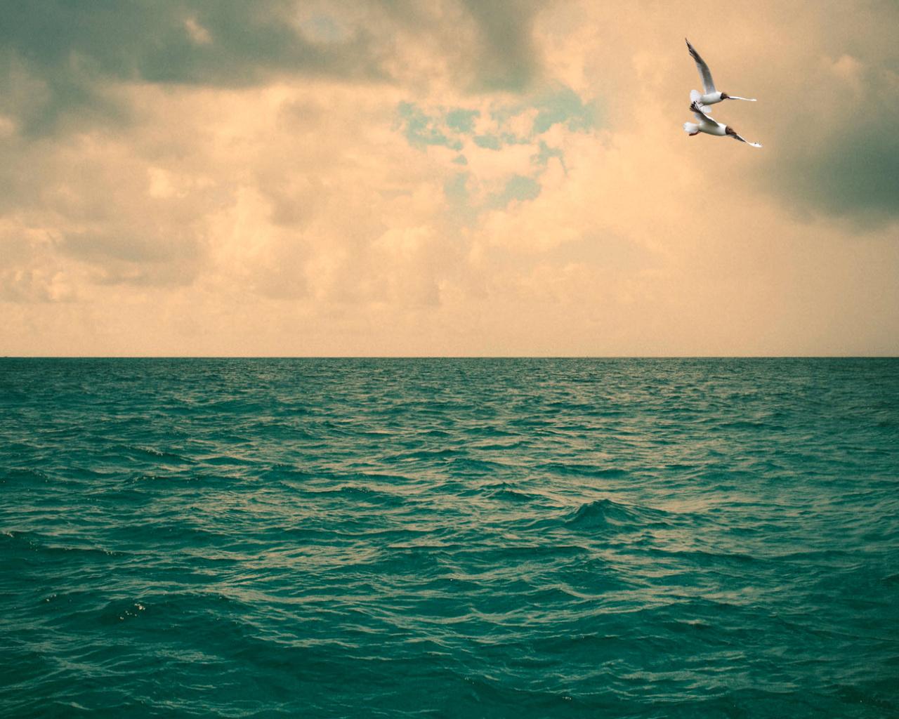 пейзаж, небо, океан