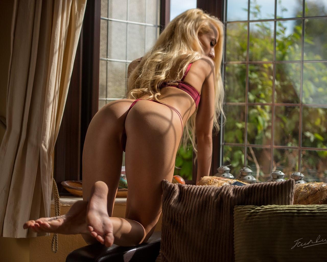 блондинка, поза, попа, окно, jack russell