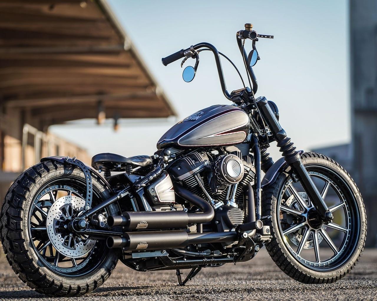 harley davidson, custom, thunderbike, street crosser