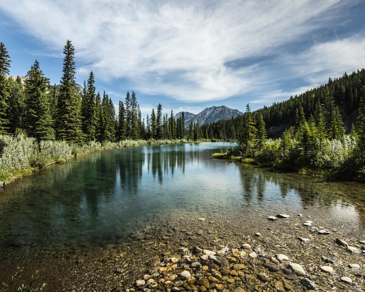 горы, озеро, лес, деревья, камни