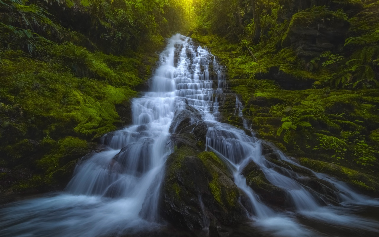 waterfall, rocks, forest, green trees, waterfall, mountains, washington state