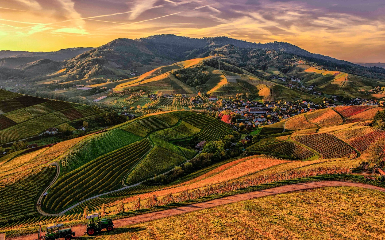 mountain, green, view, sky, grass, tree