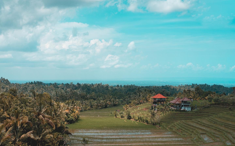 landscape, view, cloud, sky, tree