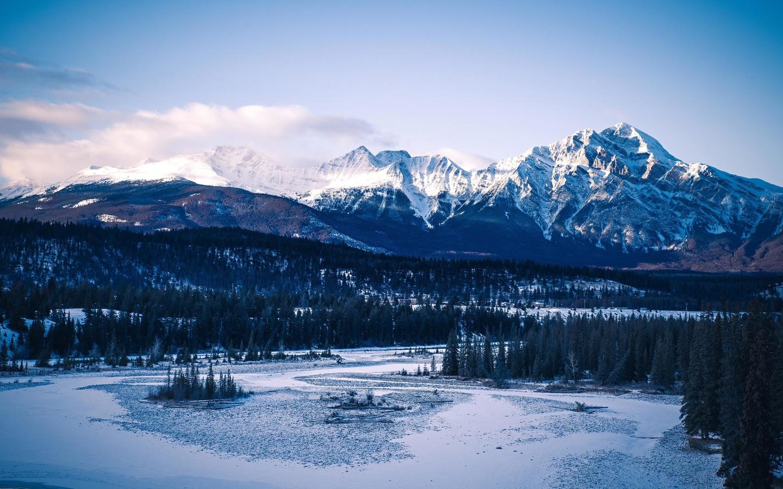 горы, вершины, снег, деревья, лес