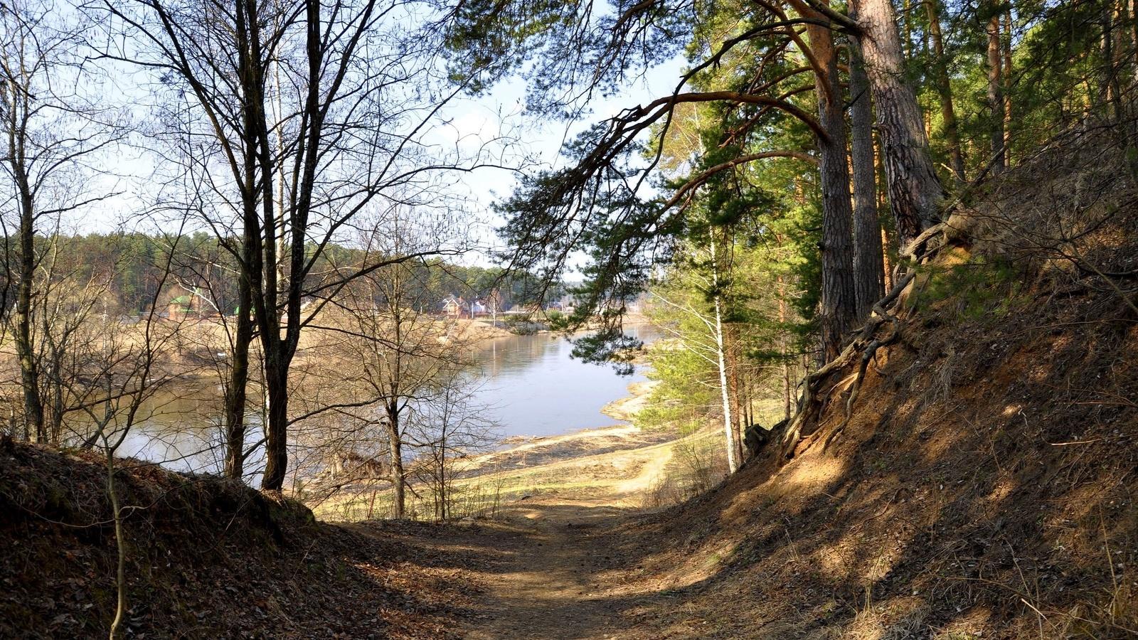 деревья, тропинка, река, деревня