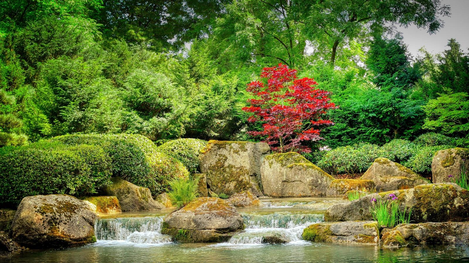 японский сад, камни, парк