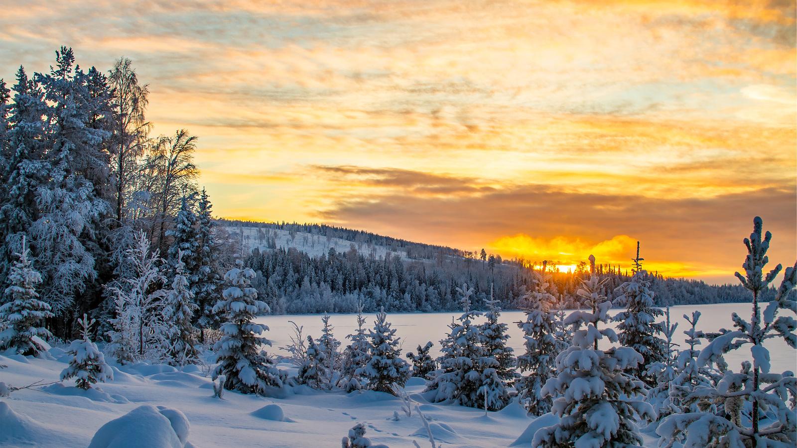 закат, снег, гора, холм, деревья, природа, пейзаж