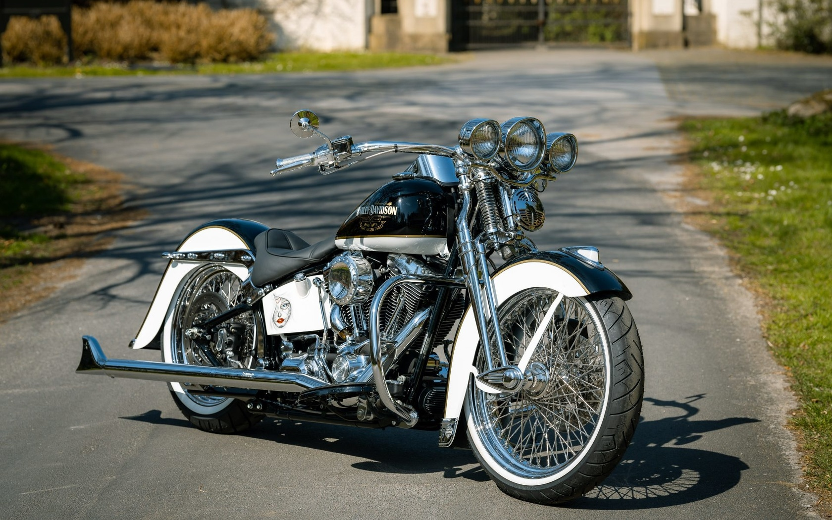 harley davidson, la hermos, мотоцикл