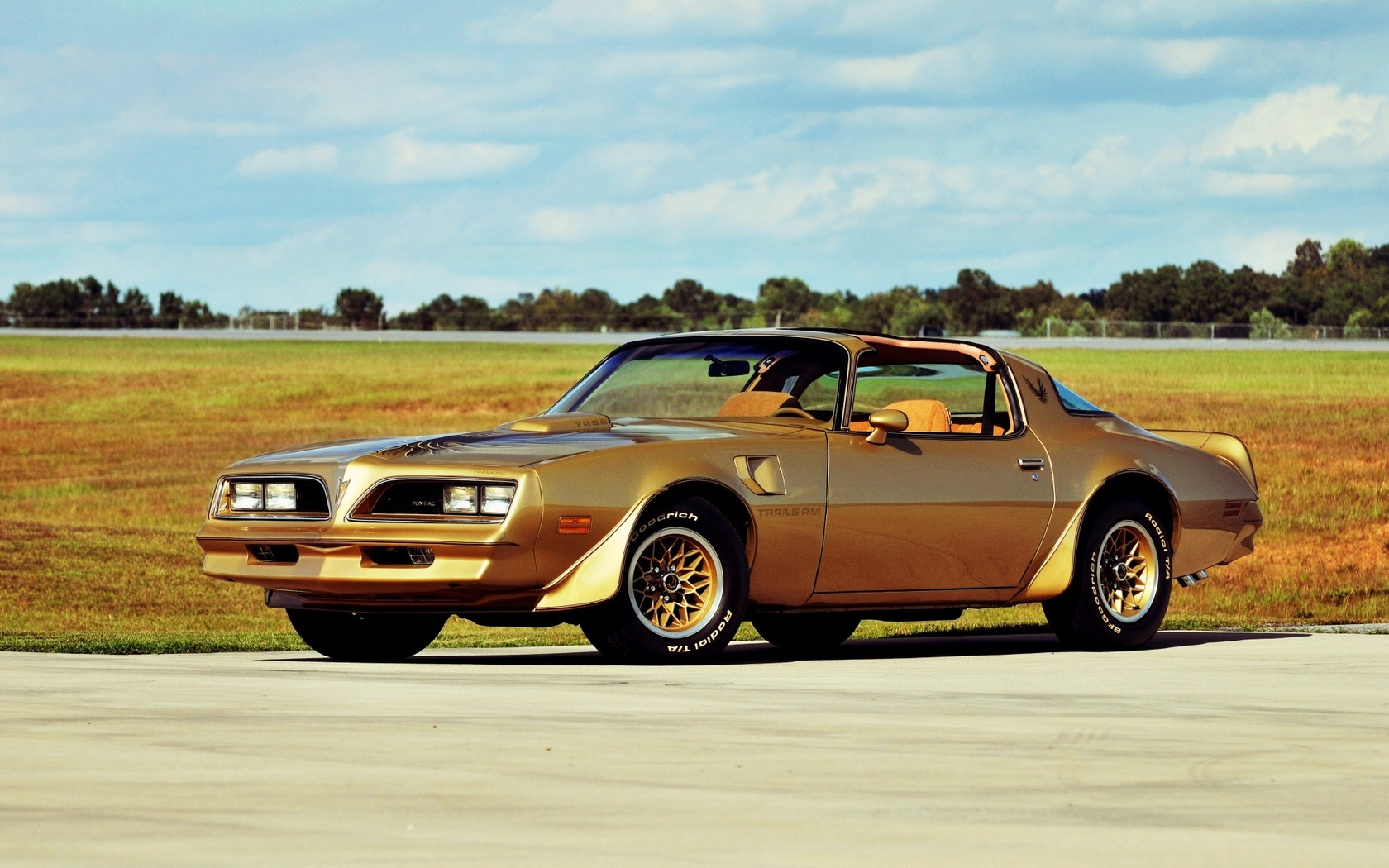 pontiac, firebird, trans am