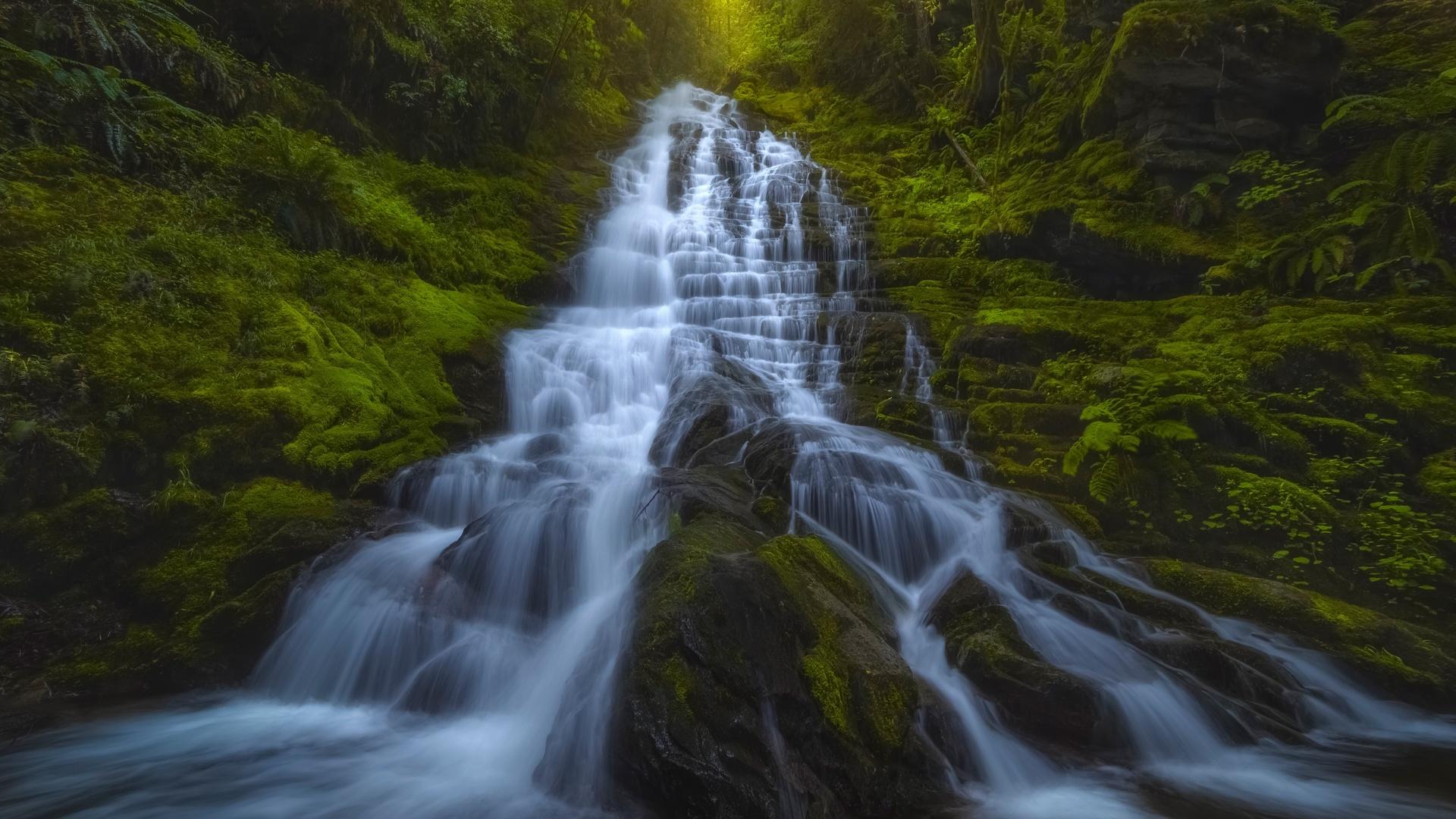 waterfall, rocks, forest, green trees, waterfall, mountains, washington state