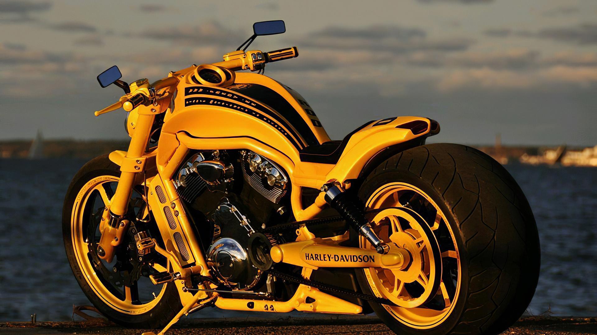harley davidson, beach, mirror, road, motorcycle
