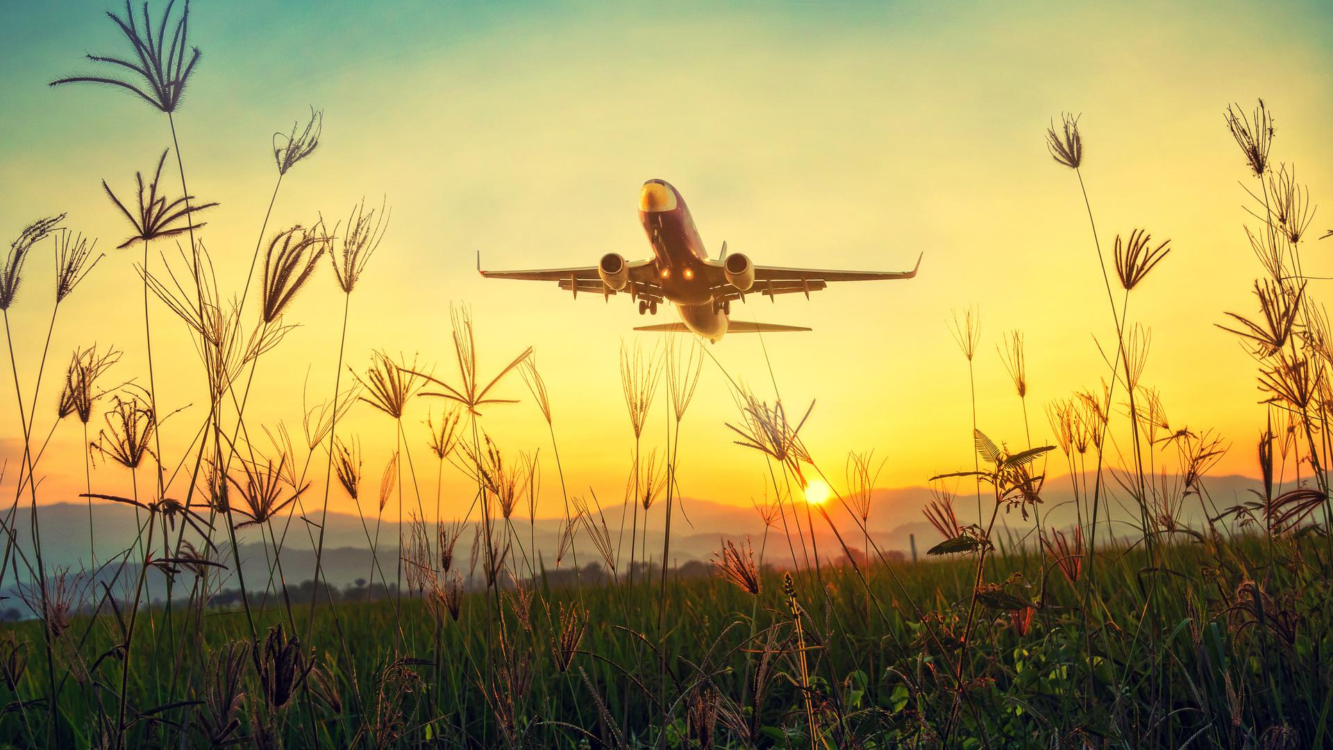 самолет, трава, взлет, солнце, авиация, природа