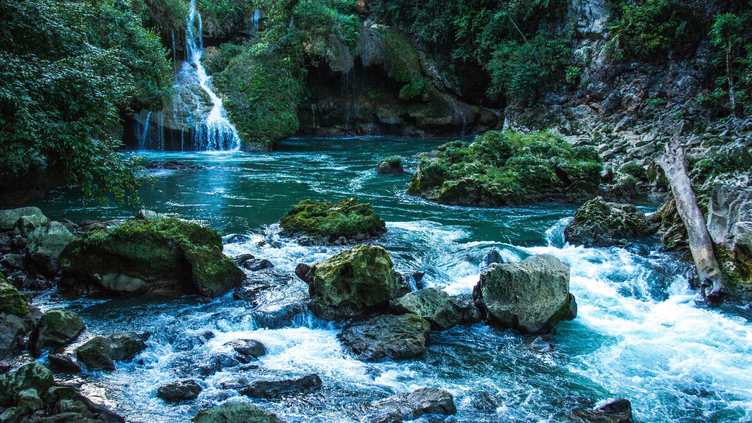 камни, river guatemala, скала, мох, природа