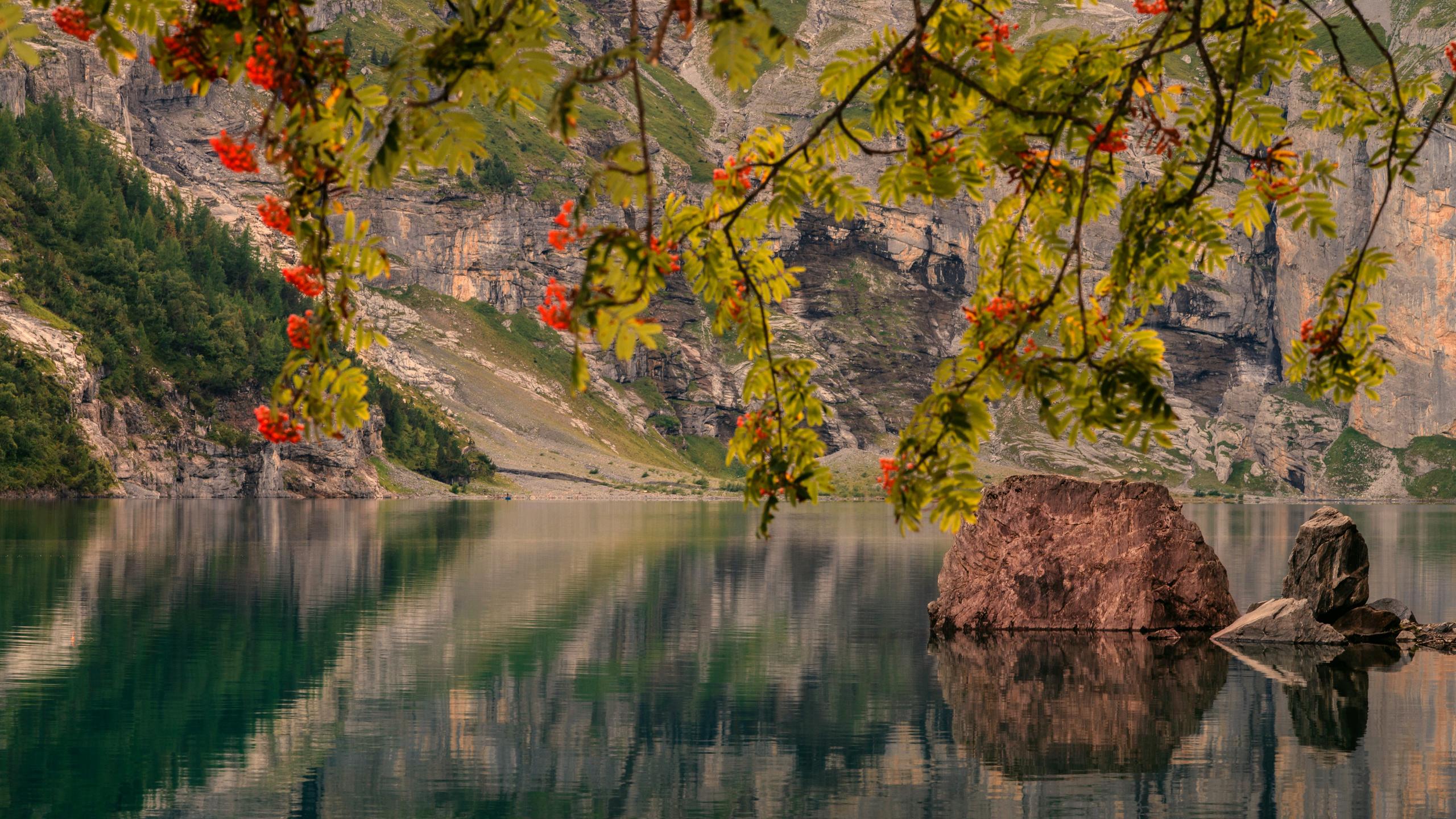 австрия, озеро, пейзаж