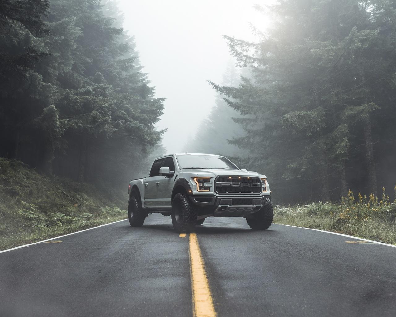 ford, raptor, f-150, дорога, лес