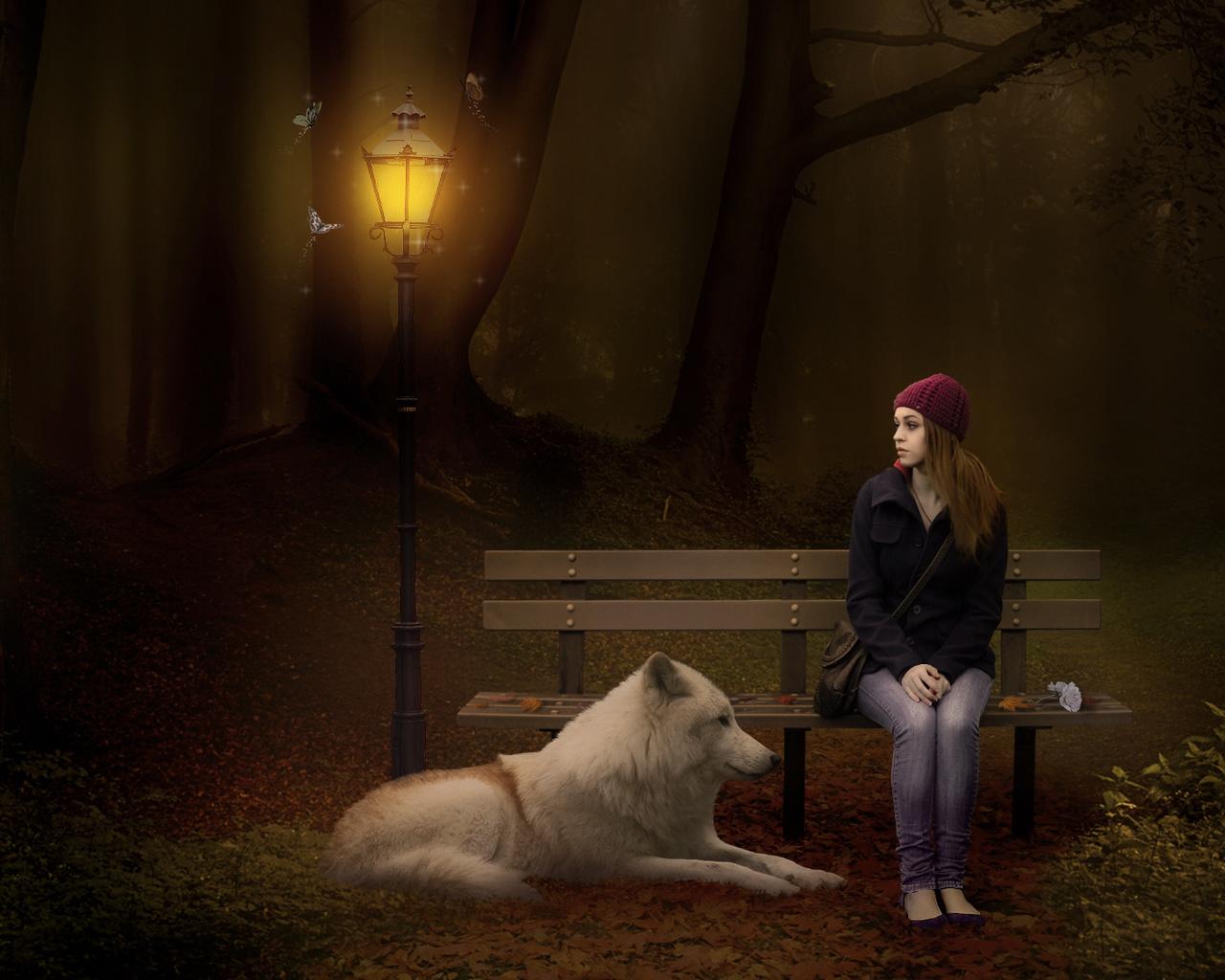 девушка, волк, фонарь