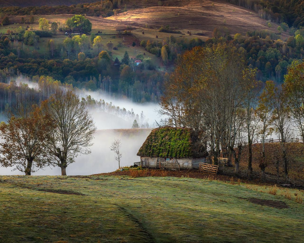 осень, деревья, пейзаж, природа, туман, холмы, дома, утро, деревня, луга, румыния, трансильвания