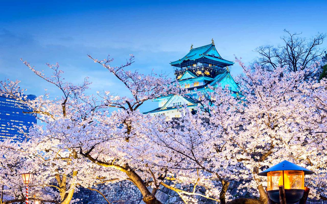 Япония, город, осака, весна, деревья, цветение, сакура, пахода, вечер, фонари, пагода