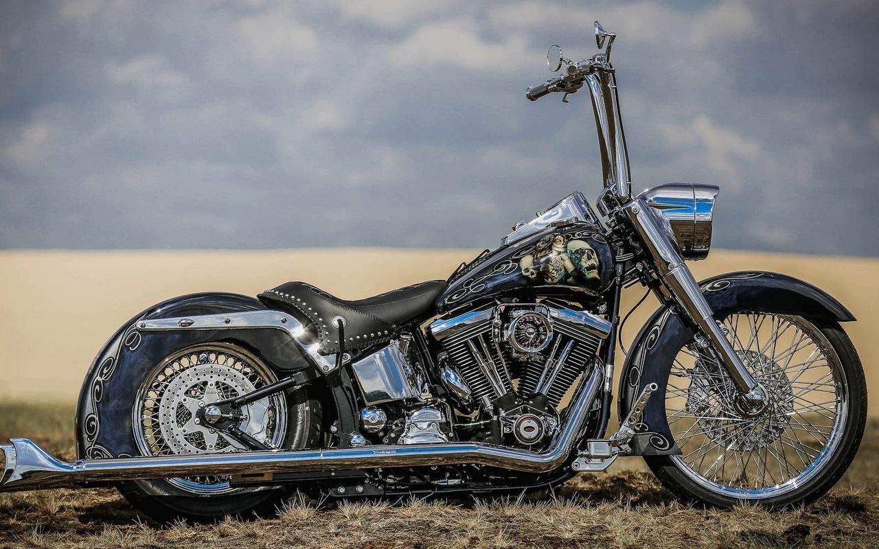 harley davidson, custom, thunderbike, ei gringo, el gringo