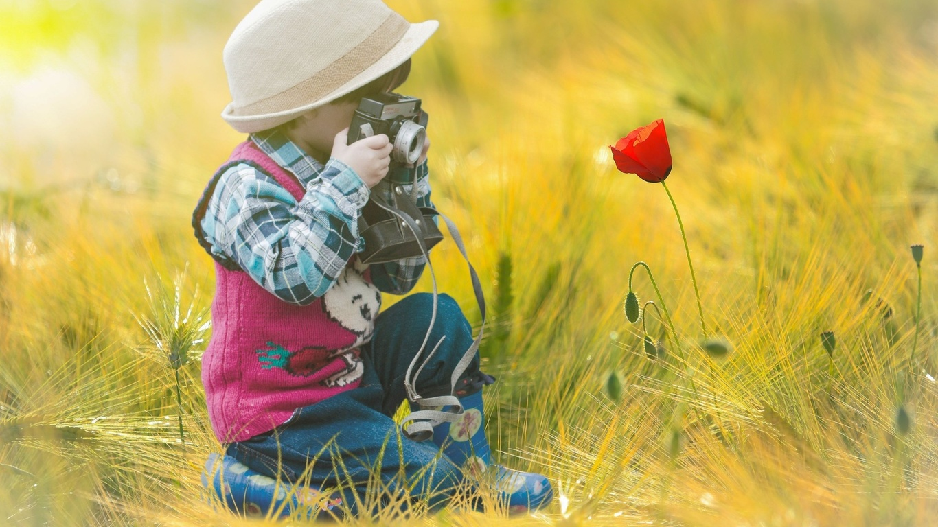 мальчик, ребенок, фото, цветок, мак