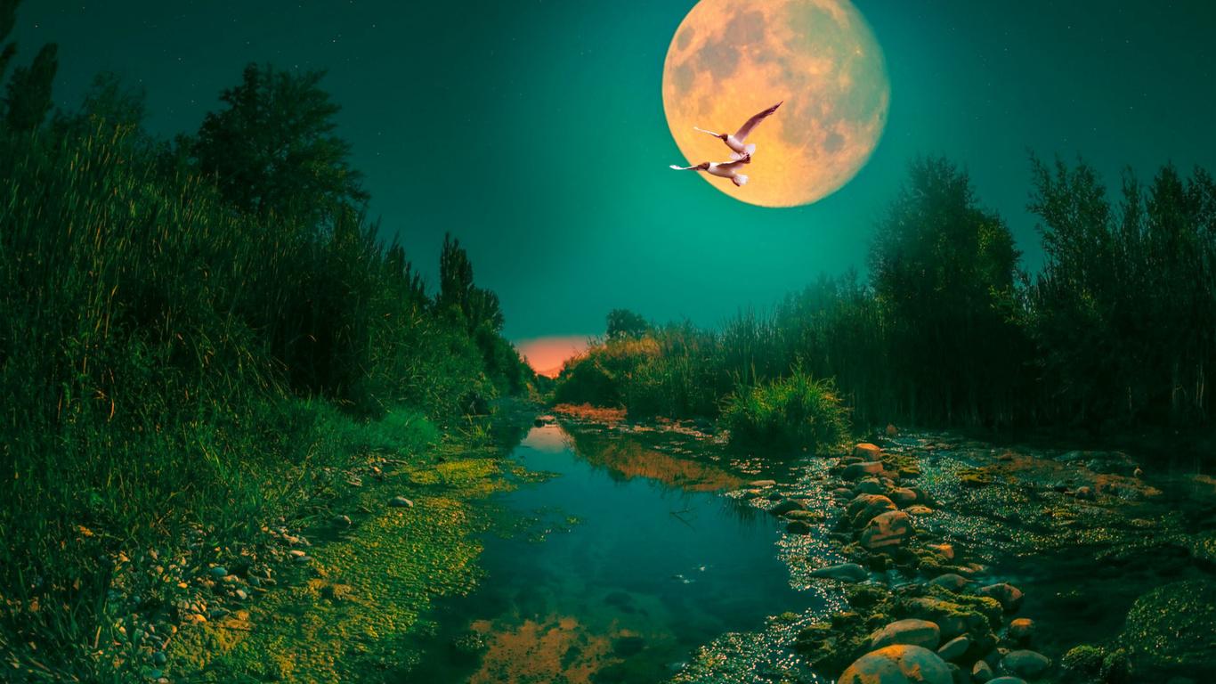 пейзаж, ремейк, ночь