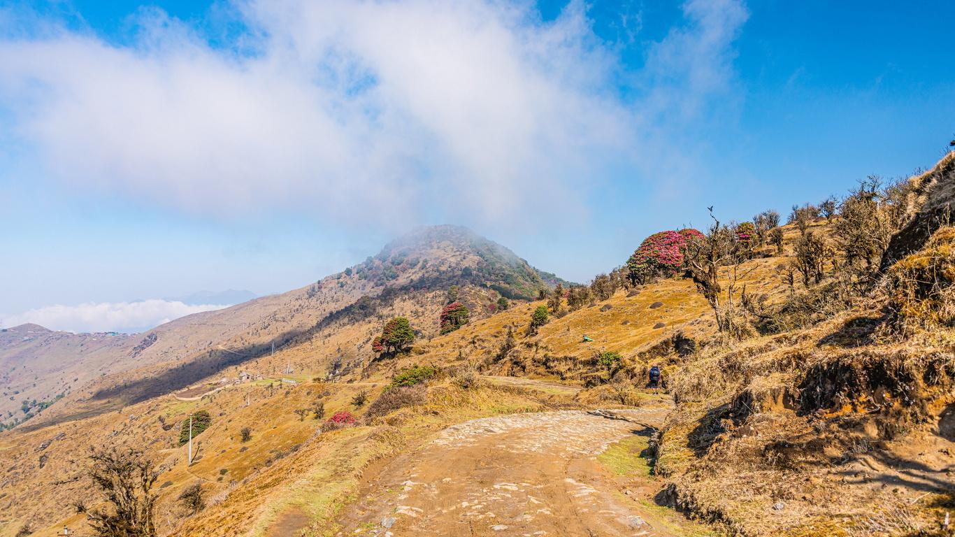 индия, горы, singalila, national park, west bengal, деревья, тропа, облака, природа