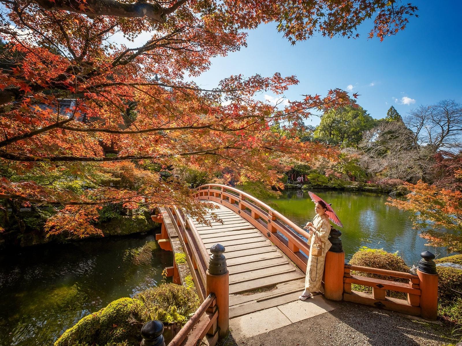 Япония, природа, пейзаж, парк, пруд, мостик, девушка, зонт, японка