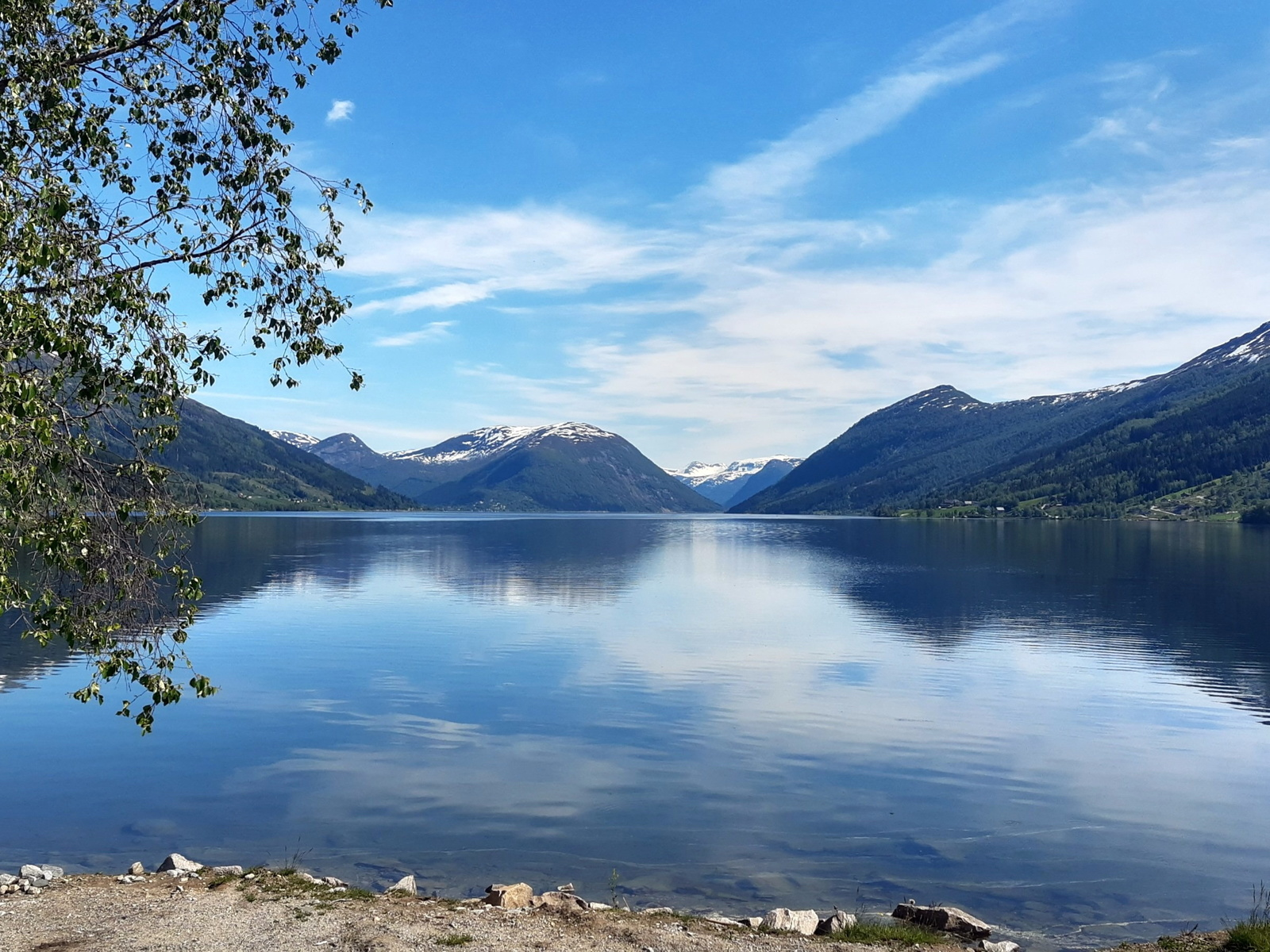 норвегия, фьорд, лето