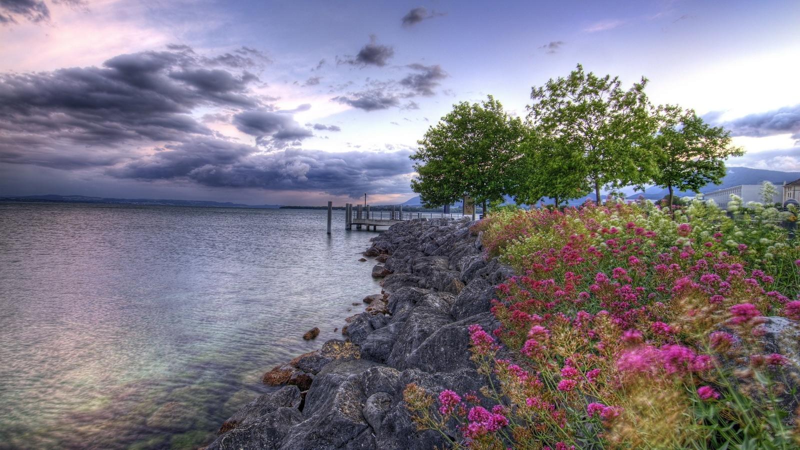цветы, скалы, пирс, озеро, деревья
