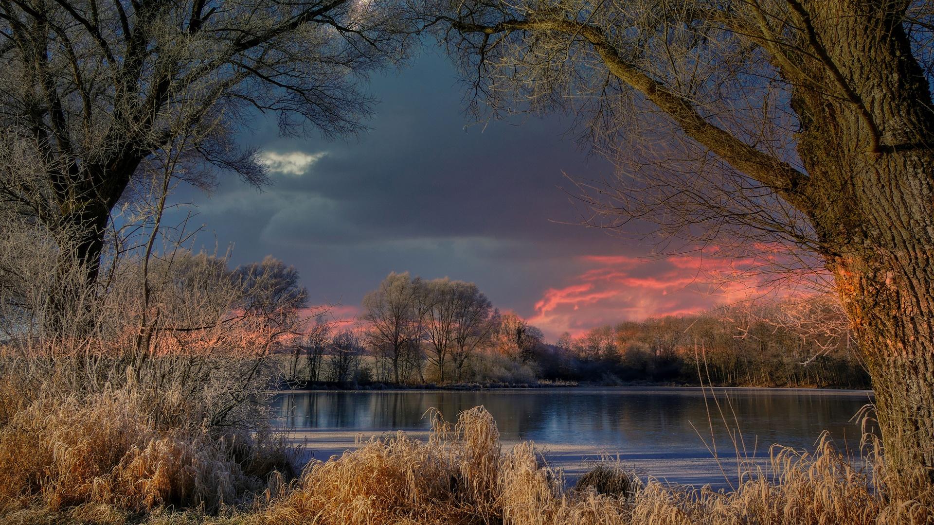 ночь, вечер, темный, озеро, пруд