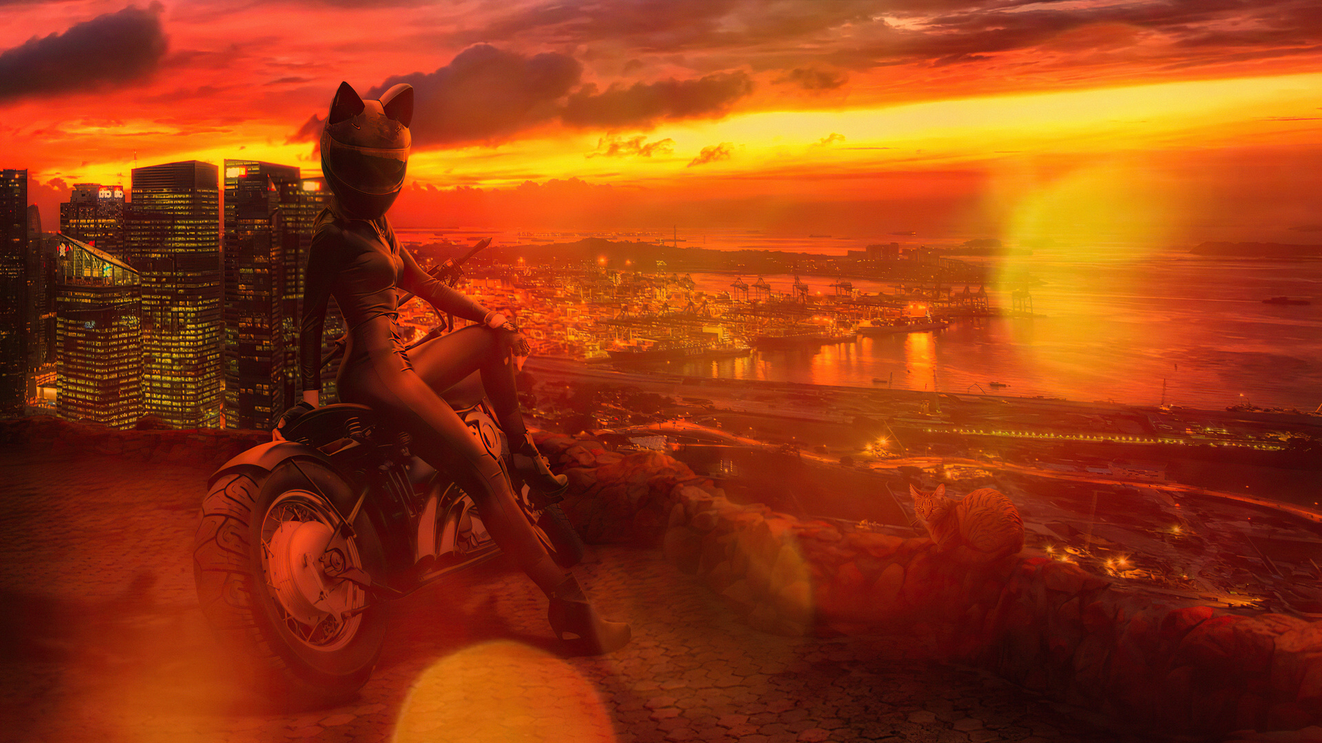 girl, cat, helmet, девушка, мотоцикл, шлем