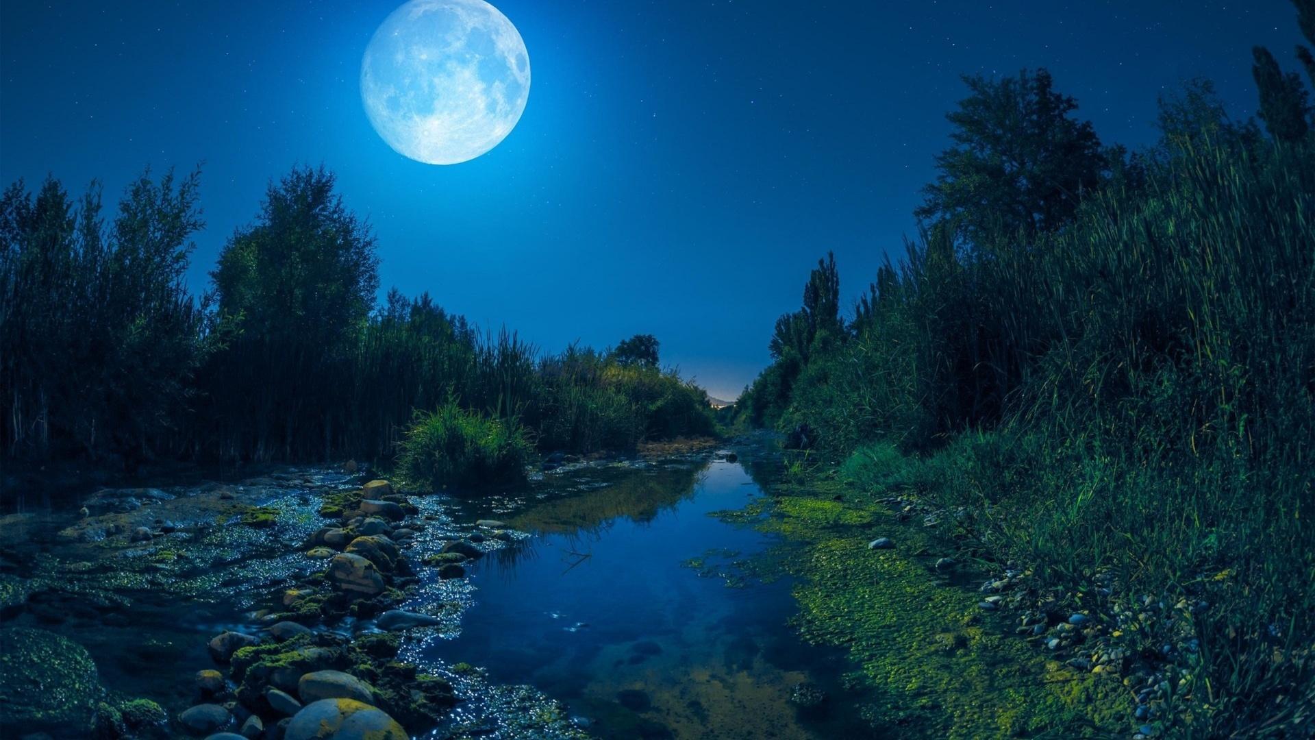 природа, пейзаж, река, деревья, кусты, берега, камни, ночь, луна