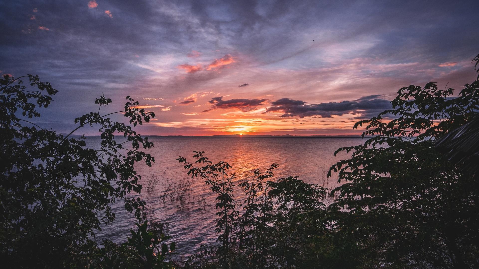 озеро, закат, волны, пейзаж, деревья, природа