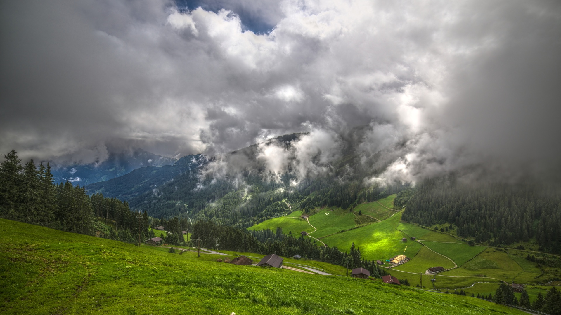 горы, трава, туман