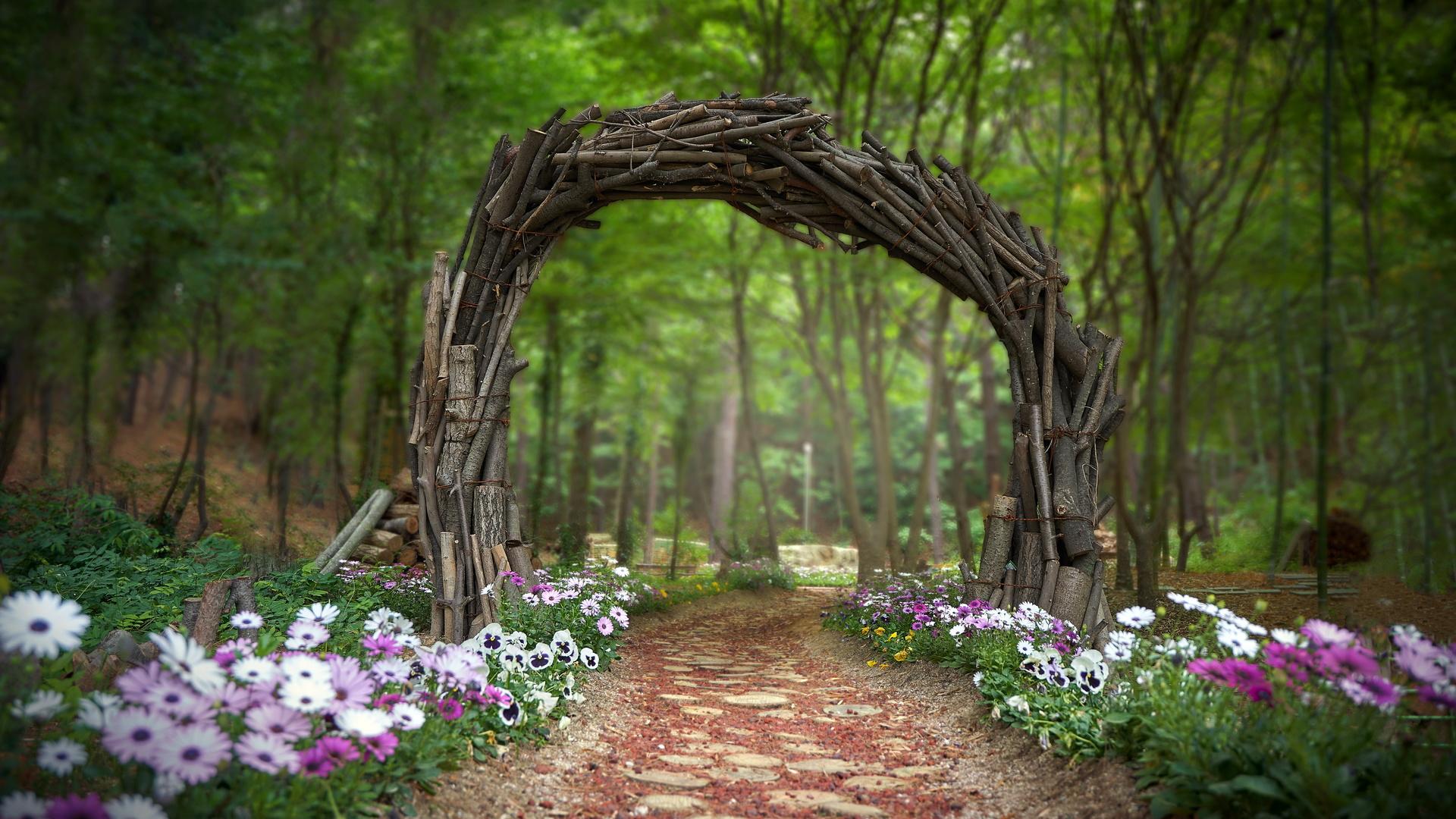 парк, цветы, дорожка