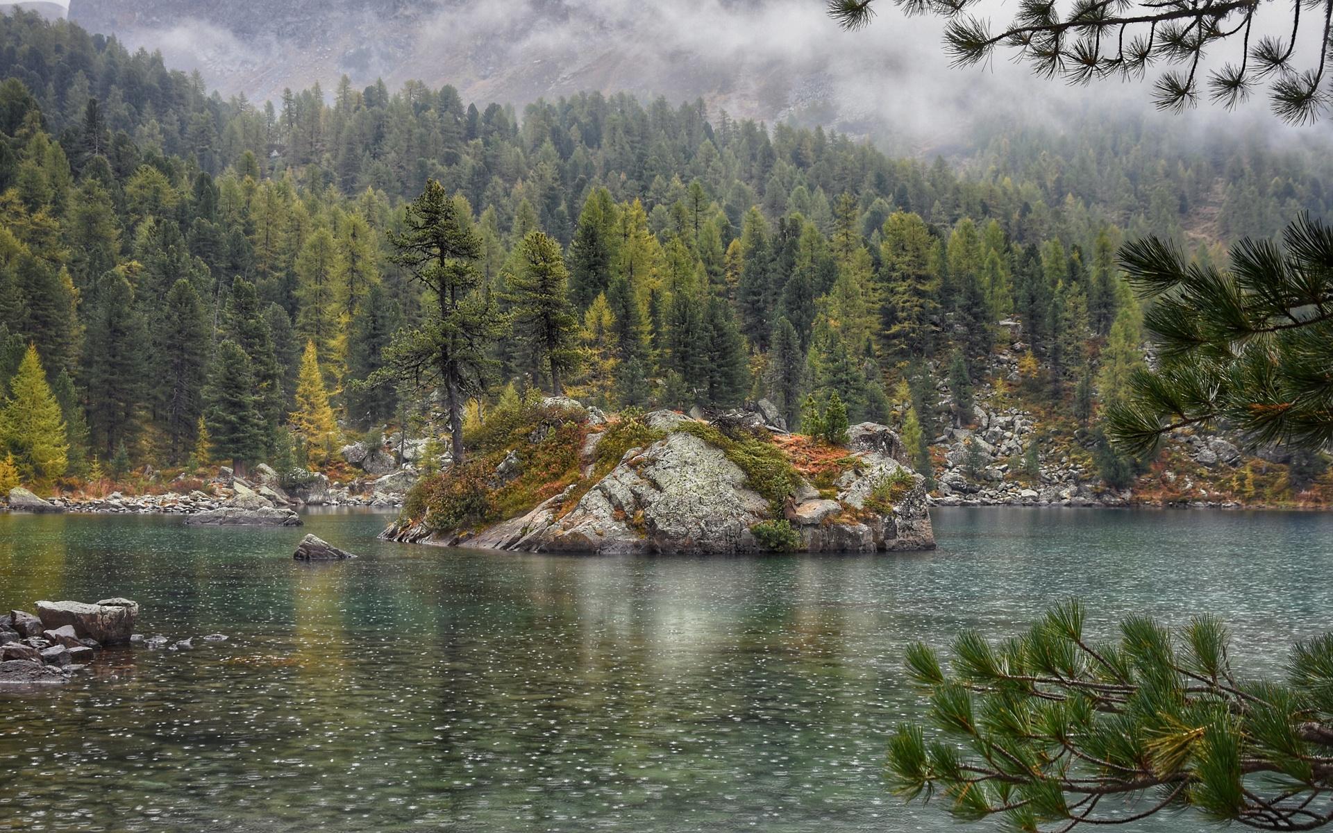 германия, берг, озеро, островок, деревья