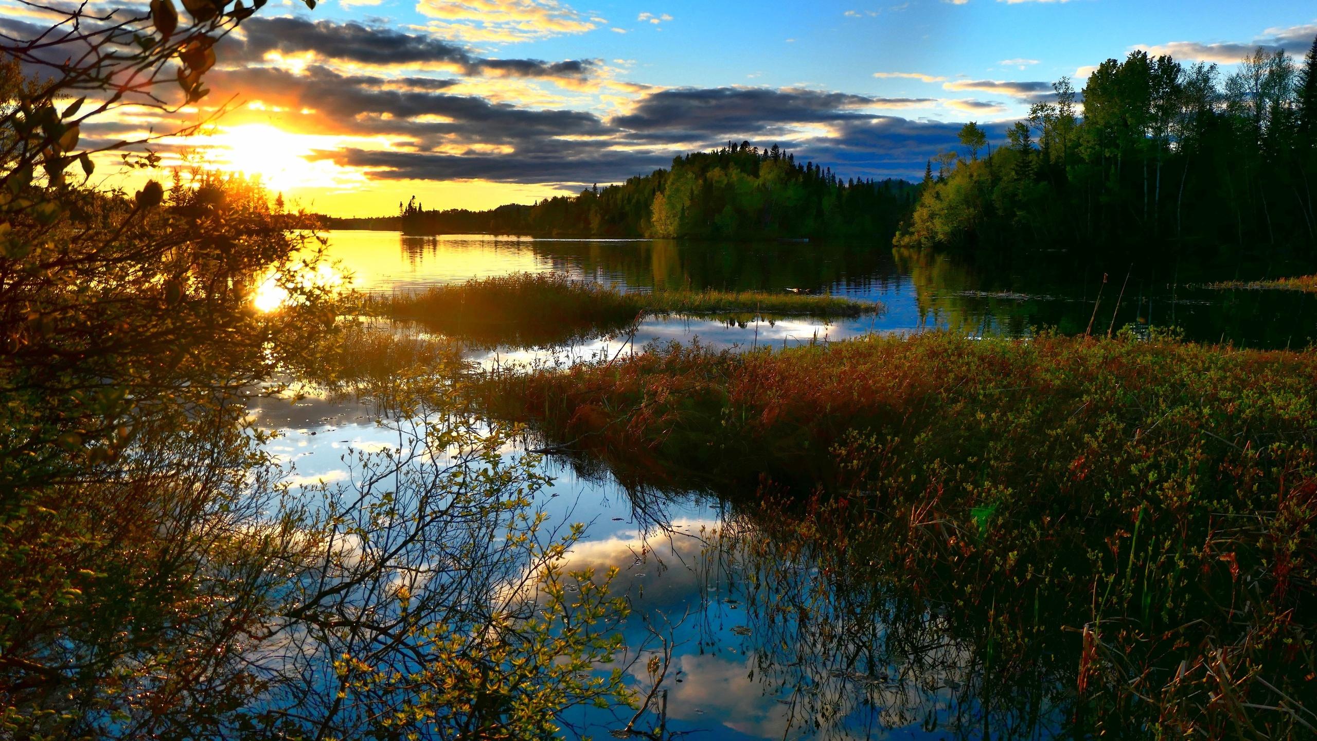 водоём, пруд, природа, вечер