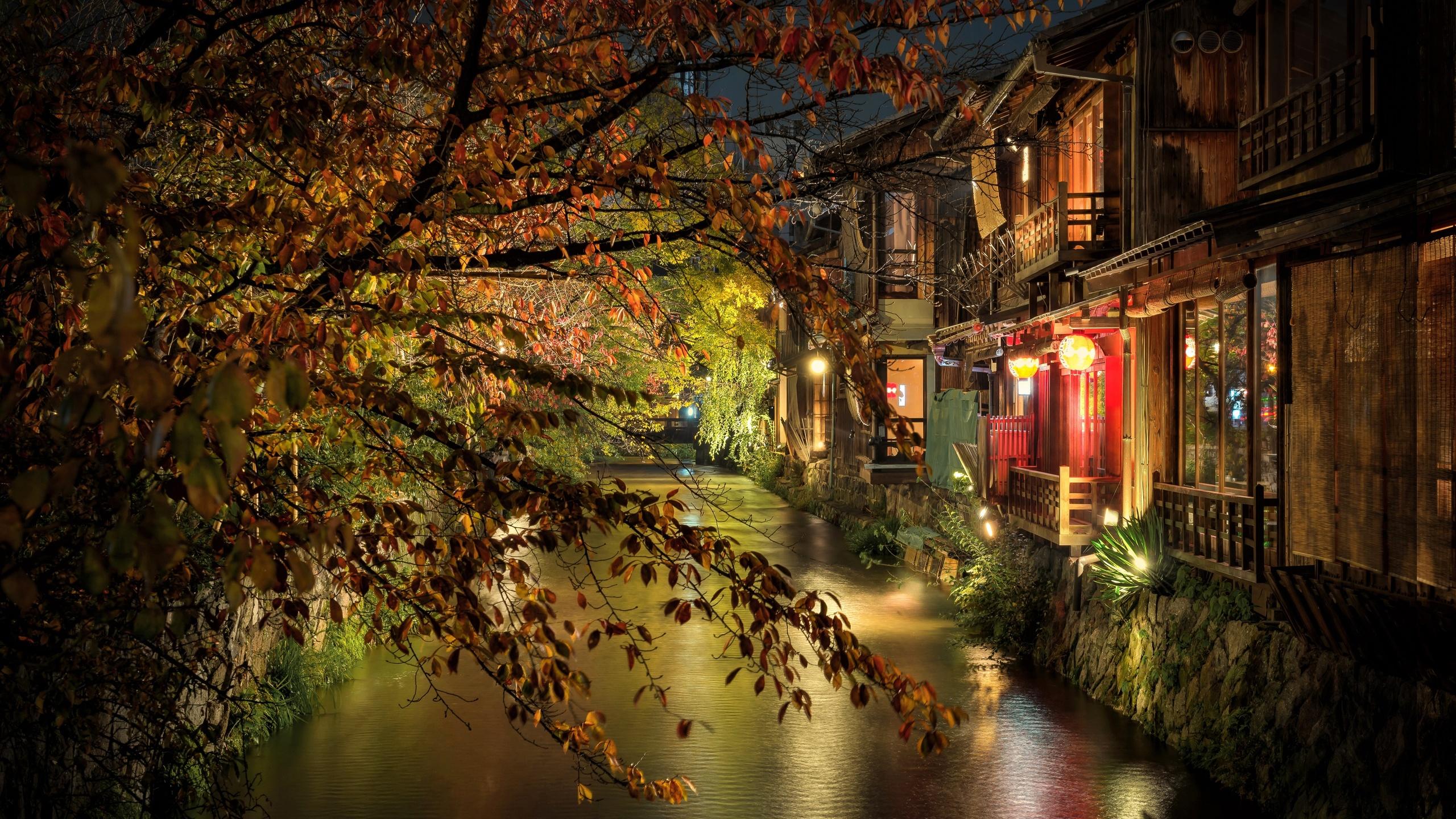 kyoto, evening, night, kyoto streets, japanese city, lights, japan