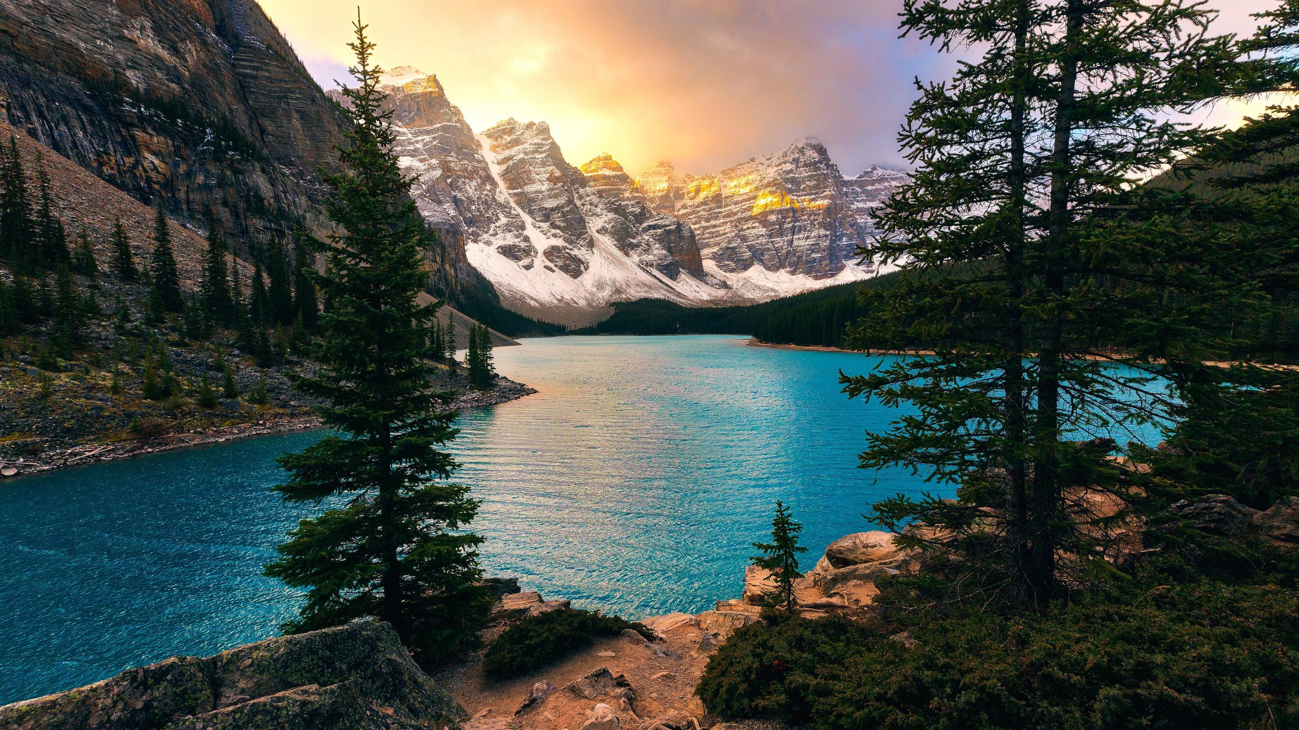 деревья, озеро, горы, скалы, природа, канада, альберта, морейн, trees, lake, mountains