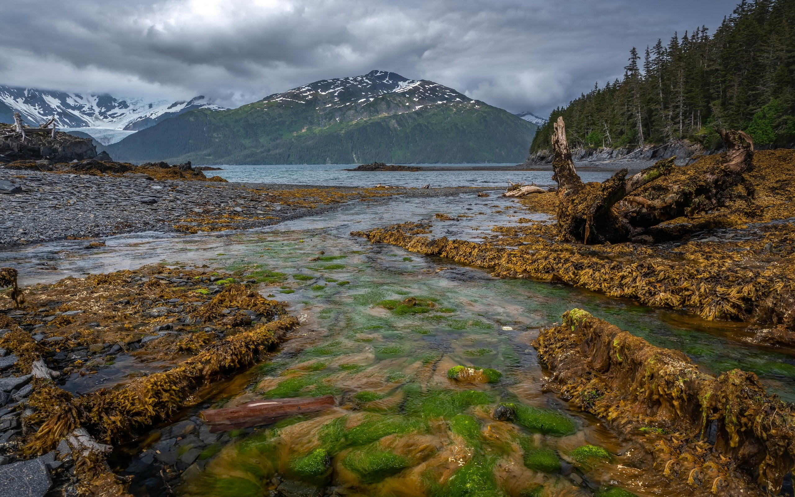 аляска, горы, камни, река, лес, whittier, природа